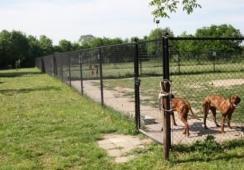 Foto's van De Bengels HondenVerzorgingsCentrum