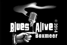 Internationaal bluesfestival: Blues Alive Boxmeer